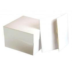 Tapas Blancas 45x45x7 cms